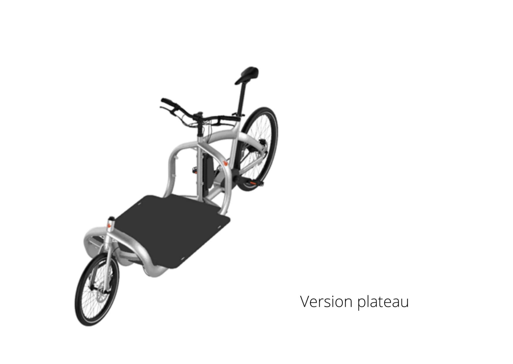 vélo logistique Triobike version plateau